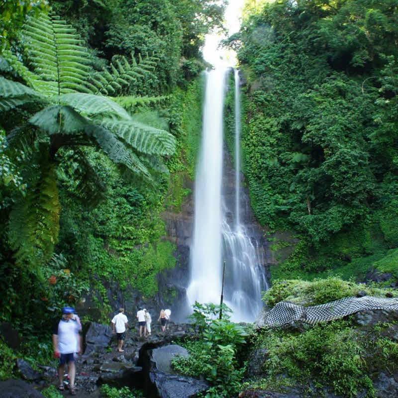 Sightseeing Bali