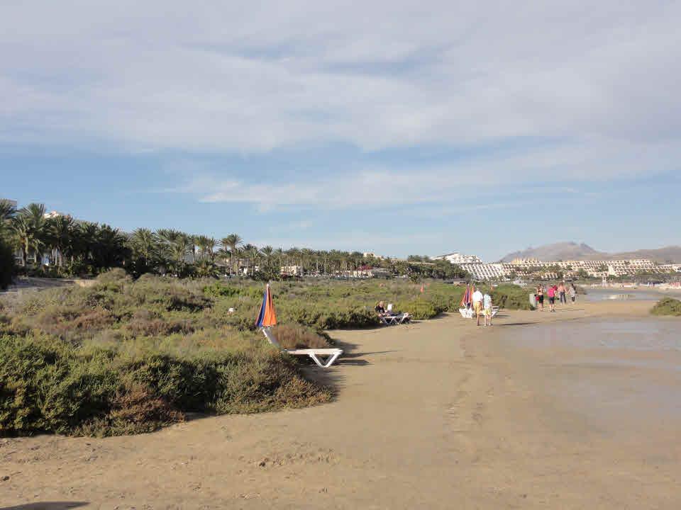 Surfkurse Costa Calma