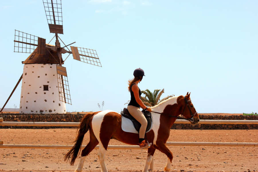 Reiten Fuerteventura