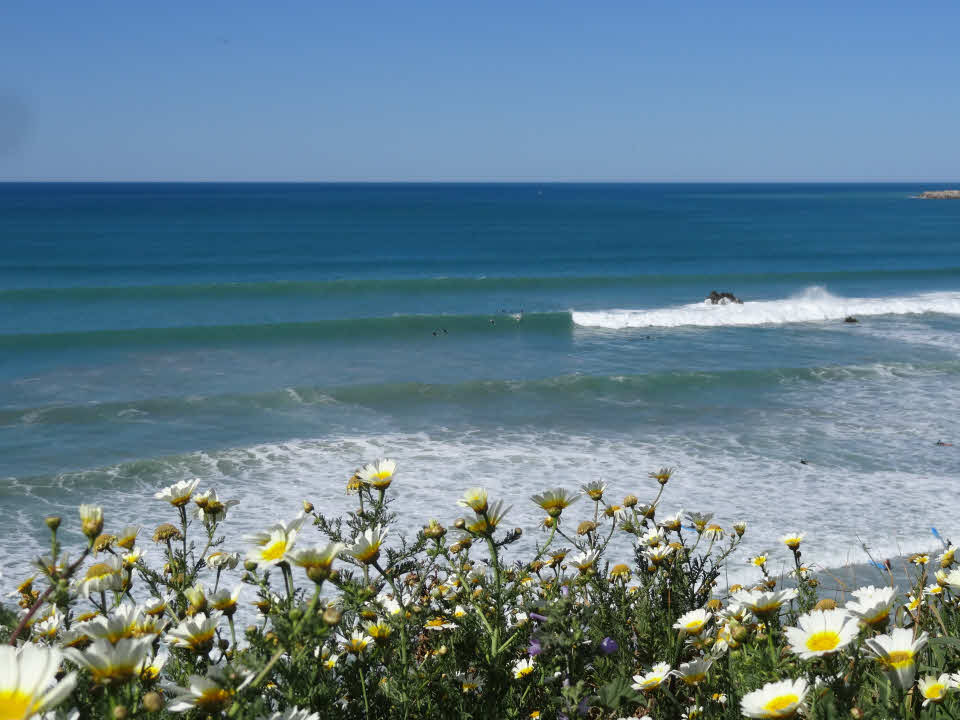 Wellenreiten Andalusien