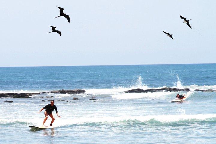 Surfen lernen Los Organos