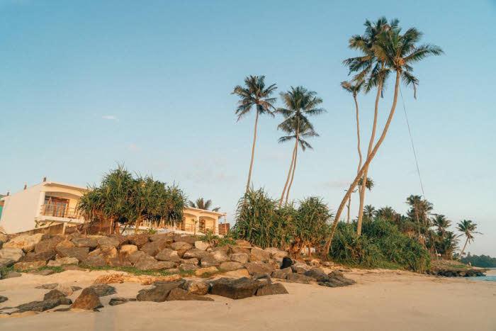 Surfcamp in Ahangama Sri Lanka
